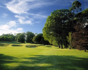 The 10th hole in Mount Juliet