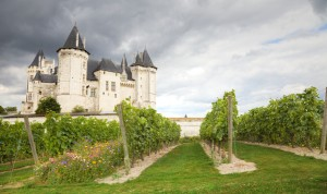 Loire Valley Vineyard and Chateau