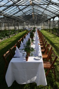 A Long table to be filled with food, wine and people