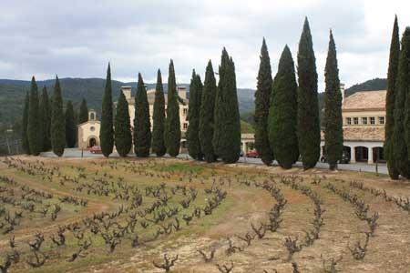 A Bodegas in Navarra