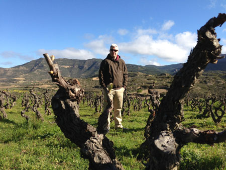 among-the-Rioja-vines